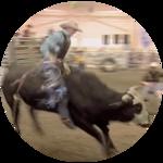 Wacey (Bull Riding)