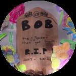 Tarantula Funeral