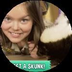 Meet A Skunk