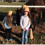 Horses for Kids | All About Horses | Fun Horse Videos for Kids