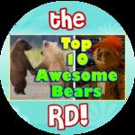 """Paddington"" inspired Top 10 Awesome Bears!"