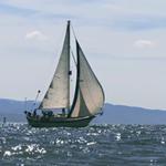 Boats - Bitziboos