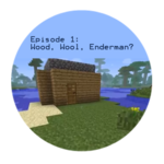 Wood, Wool, Endermen?